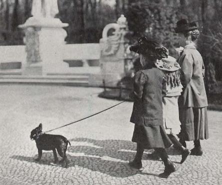 berliner leben 1905tier