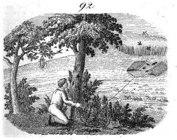 neuer orbis pictus 1832vogelgarn