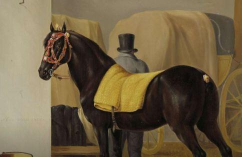 horse1828